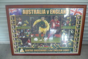 large framed australian & england has photos of all the players